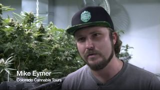"BBC News covers Colorado Cannabis Tours ""Ready to get High?"""